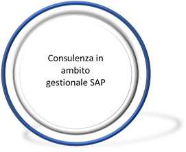 Consulenza in ambito gestionale SAP
