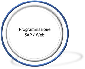 Programmazione SAP / Web