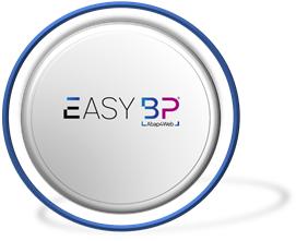 EasyBP® Abap4Web